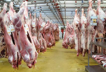 """""""Il est urgent d'exporter plus"""", avertissent les éleveurs européens"""