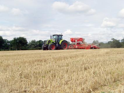 Implanter une prairie en fin d'été