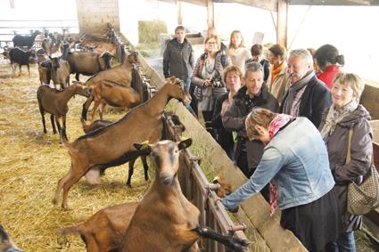 La restauration scolaire en Haute-Saône: locale et bio