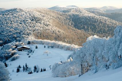 Pluriactivité hivernale en haute montagne
