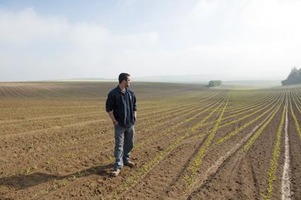 agriculteur en difficulté