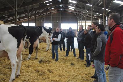 La Holstein en AG