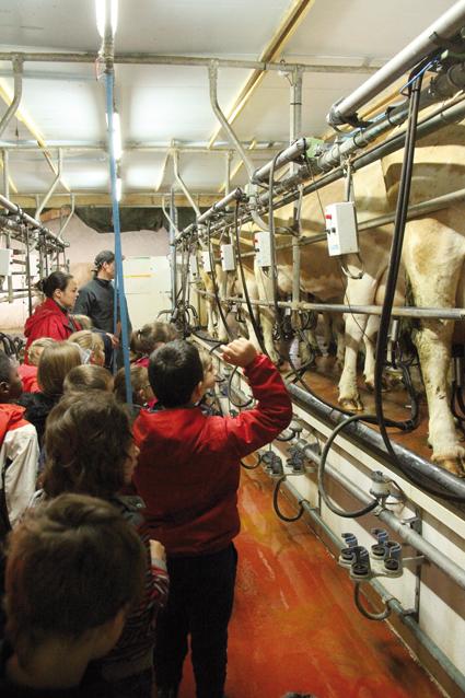 Les scolaires à la rencontre de l'agriculture