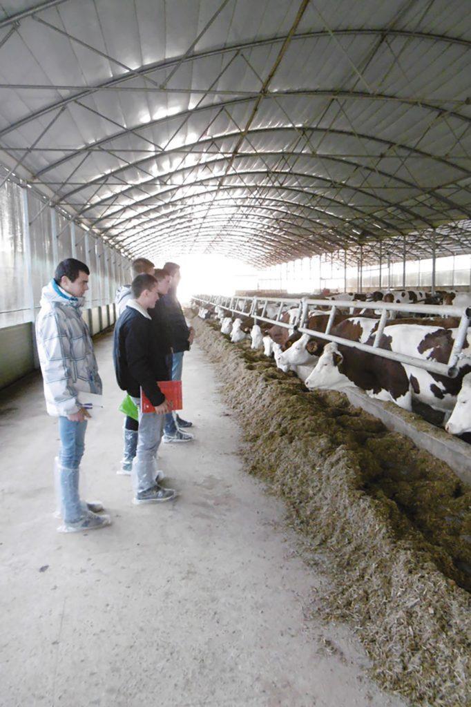 Un CS élevage laitier à la MFR
