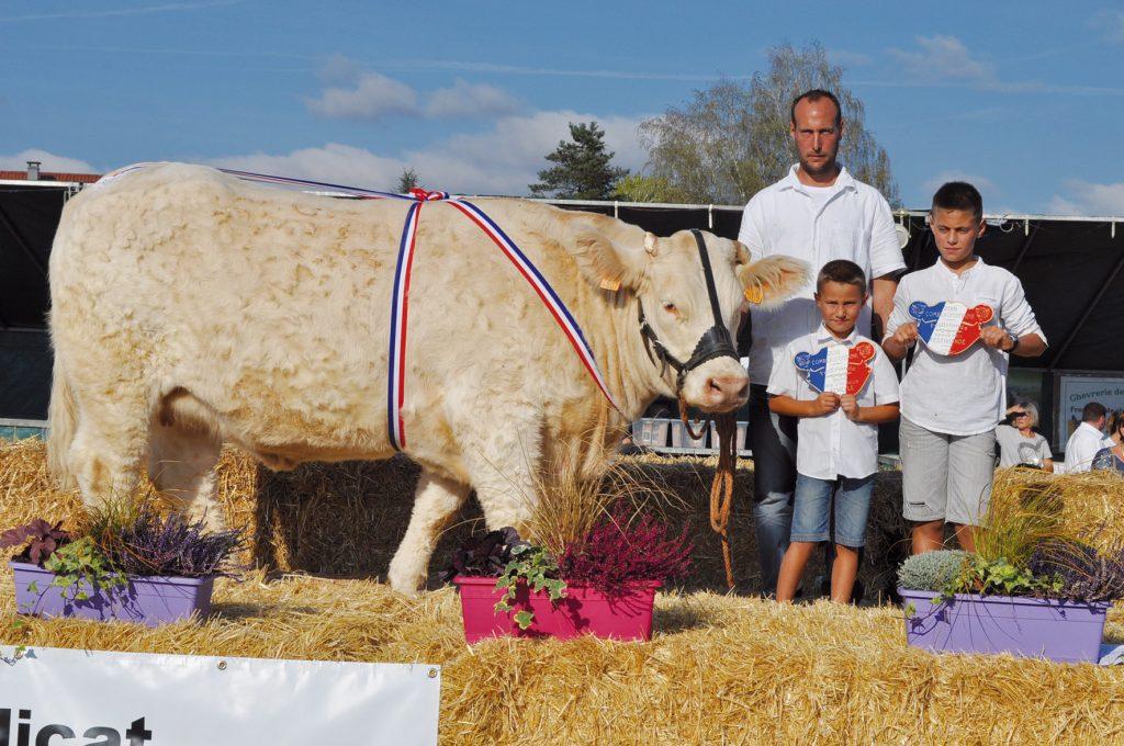 Le GAEC Mougin remporte le grand prix d'honneur femelle et le Grand prix Festiviande avec Libellule