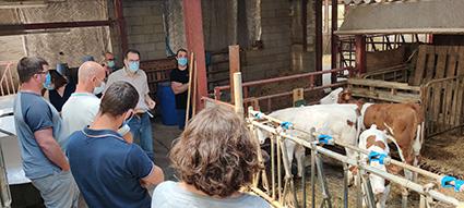 Santé: première journée du réseau d'éleveurs sur le projet Mo3Santé