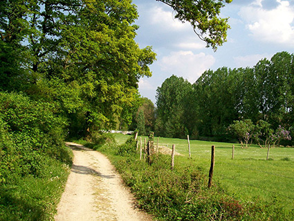 Les chemins ruraux