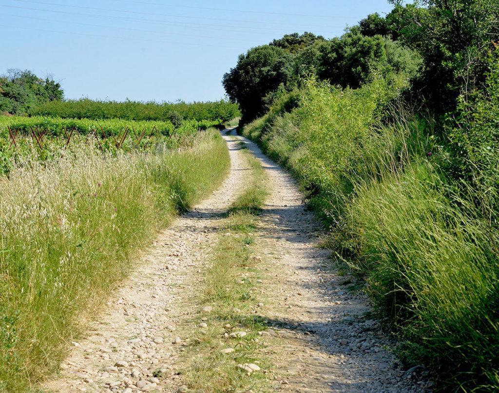 Chemins et sentiers d'exploitation